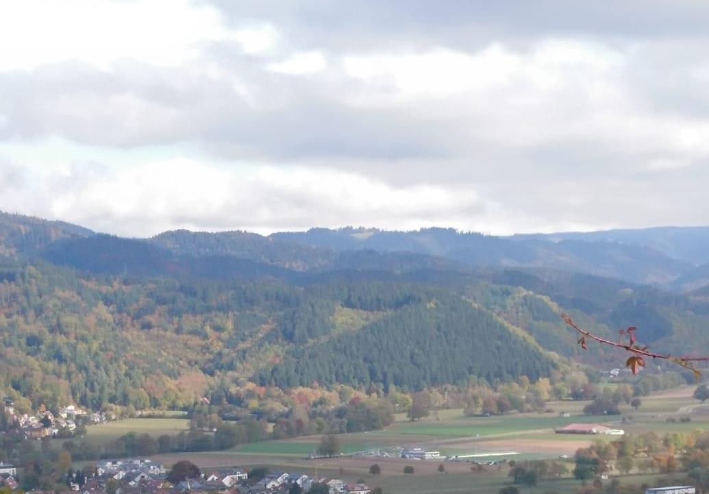 Bild Reise Freiburg